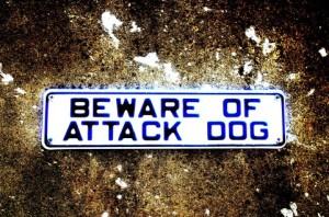 【書籍】タイトルすら狡猾に読者を騙す-米澤穂信「犬はどこだ」-